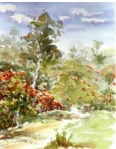 Carol-bush track